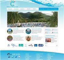 Balçova web tasarım