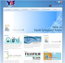 ysf web design